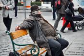 Travel photography:Vienna Fiaker driver having a break, Austria