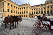 Travel photography:Fiaker (horse carts) outside Schönbrunn palace, Austria
