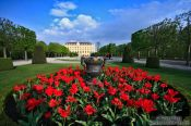 Travel photography:Schönbrunn palace gardens , Austria