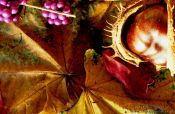 Travel photography:Autumn still life