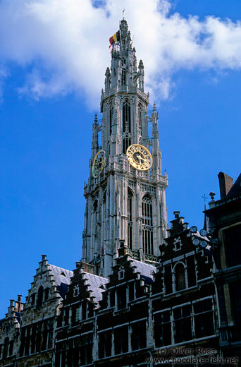 Antwerp cathedral with houses