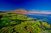 Travel photography:Laguna Colorada at sunset, Bolivia