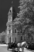 Travel photography:Horse Carriage near Place d`Armes in Quebec city, Canada