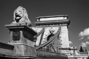 Travel photography:The Chain Bridge in Budapest with lion sculpture, Hungary