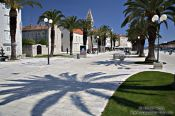 Travel photography:The promenade with palm trees in Trogir, Croatia