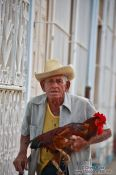 Travel photography:Old man with rooster in Trinidad, Cuba