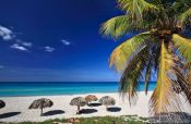 Travel photography:Sun umbrellas and palm tree on a beach in Varadero, Cuba