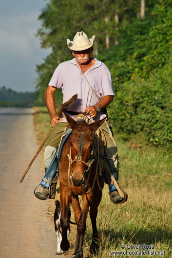 Man on horse near Viñales