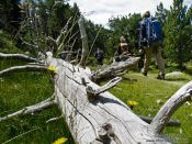 Travel photography:Hikers, France