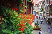 Travel photography:Flower balustrade in Meersburg , Germany