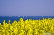 Travel photography:Sailing in the Baltic off Bülk coast, Germany