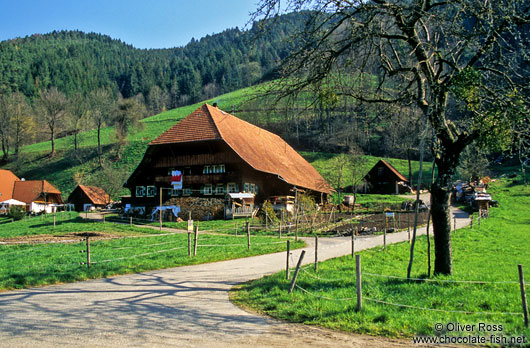 Black Forest farm house near Ortenberg
