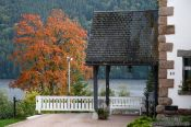 Travel photography:House and tree in the Black Forest with the lake Titisee in the background, Germany