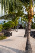 Travel photography:Palm trees in Pu`uhonua o Honaunau Ntl. Historical Park, USA