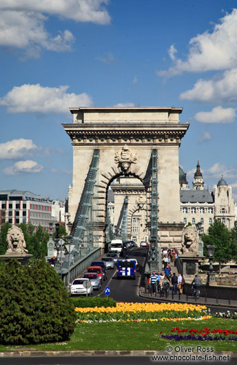 The Chain Bridge in Budapest with flower bed