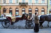 Travel photography:Budapest Fiaker , Hungary