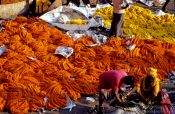 Travel photography:Kolkatta flower market, India