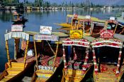 Travel photography:Parked water taxis on Dal Lake in Srinagar, India