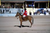 Travel photography:Polo player in Leh, India