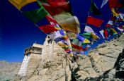 Travel photography:Namgyal Tsemo Gompa with prayer flags, Leh, India