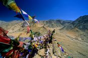 Travel photography:Buddhist prayer flags in Leh, India