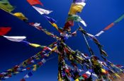 Travel photography:Buddhist prayer flags, India