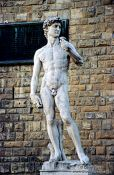 Travel photography:Michelangelo`s David in Florence, Italy