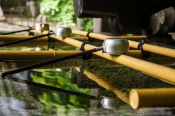 Travel photography:Water basin at the Nikko Unesco World Heritage site, Japan