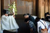 Travel photography:Ceremony at Tokyo´s Meiji shrine, Japan