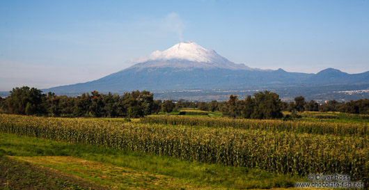 Smoke rises from the main crater of Popocatepetl volcano