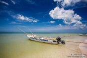 Travel photography:Celestun beach, Mexico