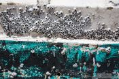 Travel photography:Detail of a boat at Celestun, Mexico