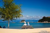 Travel photography:Tourists in Kaiteriteri, New Zealand