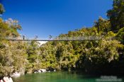 Travel photography:Hikers crossing a suspension bridge in Abel Tasman National Park, New Zealand