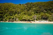 Travel photography:Beach in Abel Tasman National Park, New Zealand