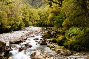 Travel photography:River in Fiordland National Park, New Zealand