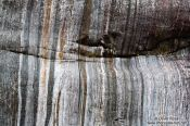 Travel photography:Sanding marks left by the Franz Josef Glacier on rocks in the river bed, New Zealand
