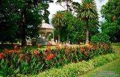 Travel photography:The Auckland Domain, New Zealand