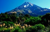 Travel photography:Mt Taranaki, New Zealand