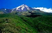 Travel photography:Mt Taranaki from the round-the-mountain-track, New Zealand