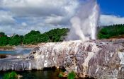 Travel photography:Geyser near Waitangi in Northland, New Zealand