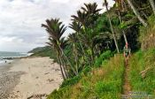 Travel photography:Hiker on the coastal section of the Heaphy track, New Zealand