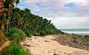 Travel photography:Beach on Heaphy Track, New Zealand