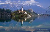 Travel photography:Island with church and Bled Castle reflected in Blejsko jezero (Bled lake) with the Slovenian Alps in the background, Slovenia