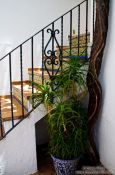 Travel photography:Entrance to a house in Granada`s Albayzin, Spain