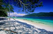 Travel photography:Tree swing on Ko Rawi beach, Thailand