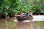 Travel photography:Boat cruising a Mekong tributary near Can Tho , Vietnam
